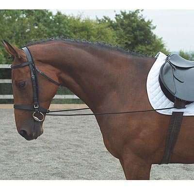 Elastic Training Reins