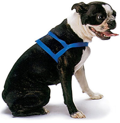 "Jeffers 1"" Double-Ply Nylon Dog Harness, 32"""
