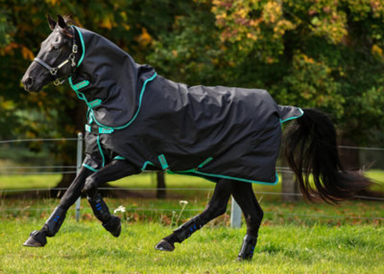 Amigo Hero 900D Plus Medium Turnout Blanket