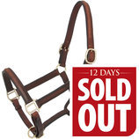 [12 Days] Royal King Raised Leather Halter