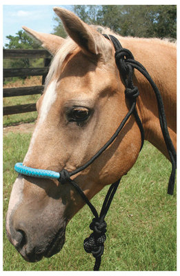 Solid Nose Poly Rope Halter w/ 7' Detachable Lead