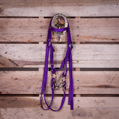 Miniature Headstall with Bit & Reins