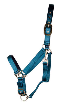 Large Horse Adjustable Halters, (900-1200 lb)