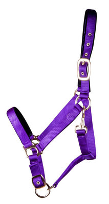 Lined Adjustable Nylon Halter for Medium Horse (600-900 lb)