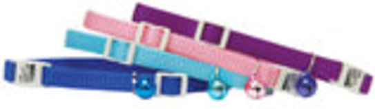"Adjustable Safety Cat Collar, 8""-12"""