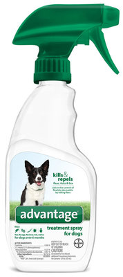 Advantage Treatment Spray for Dogs, 12 oz