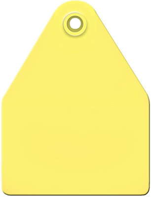 AgriTags Blank Ear Tags (Maxi), 25 count