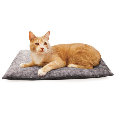 Amazin' Kitty Pad, 3-pack