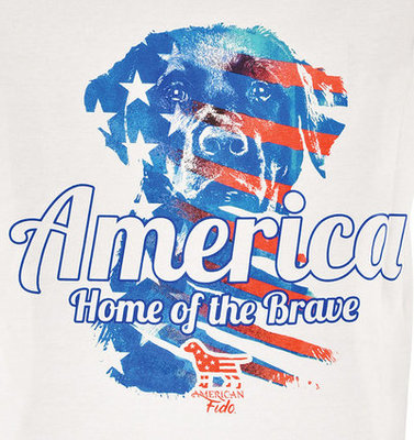 America Home of the Brave T-shirt