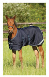 Amigo 600D Foal Blanket 200g (Medium Weight)