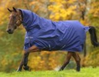 Amigo Hero 900D All-In-One Turnout Blanket