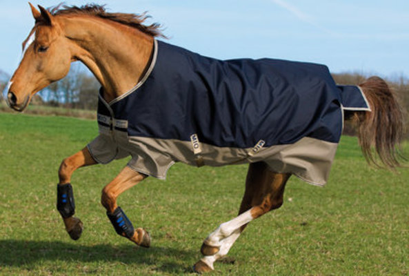 Amigo Mio 600D Horse Turnout Sheet