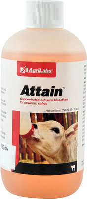 Attain Liquid, 8 oz (250 mL)