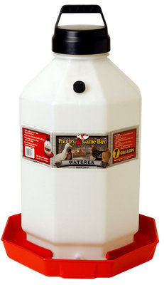 7 Gallon Automatic Chicken Waterer