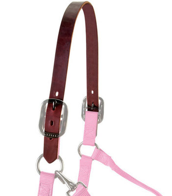Replacement Crown for Breakaway Halter