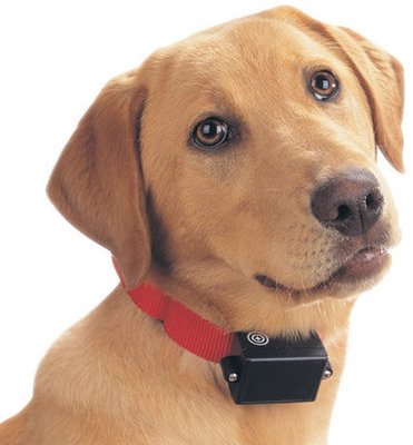 PetSafe® Bark Control Collar