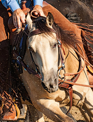 Basin Cowboy Tack Collection, Split Reins