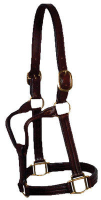 "Berlin 1-1/8"" Amish Handmade Leather Halter"
