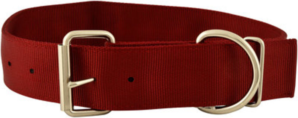"Jeffers 2"" Big Dog Collars, 15""-20"""