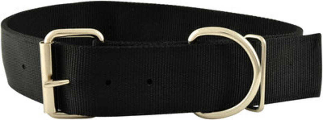 "Jeffers Big Dog Collars, 16.5""-21""L"