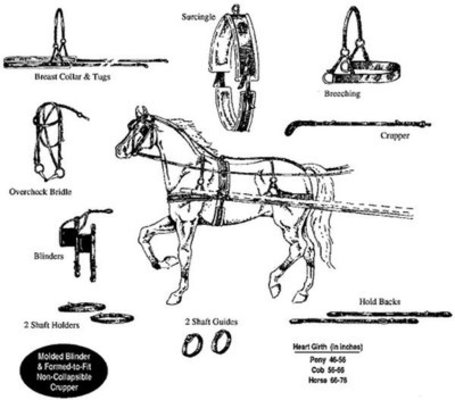 "Nylon Driving Harness, Horse (76"" to 66"")"