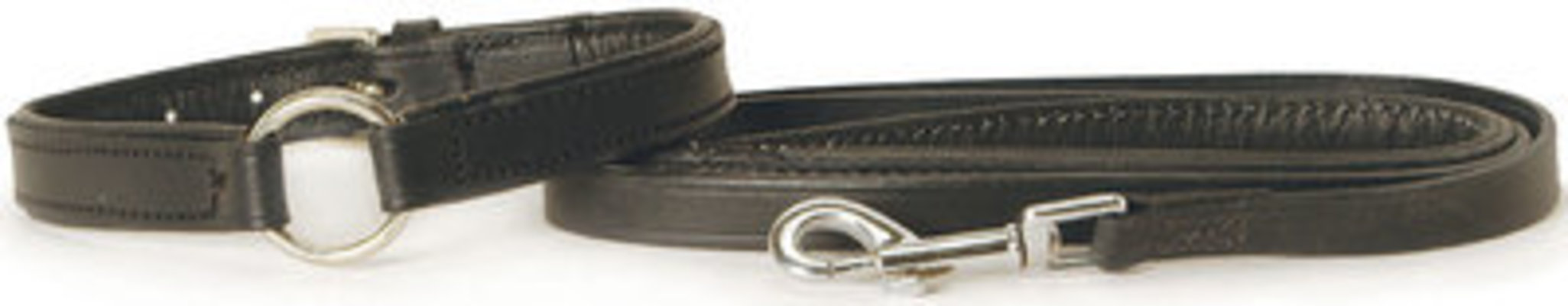 "5/8"" x 14"", Jeffers Padded Leather Collar"
