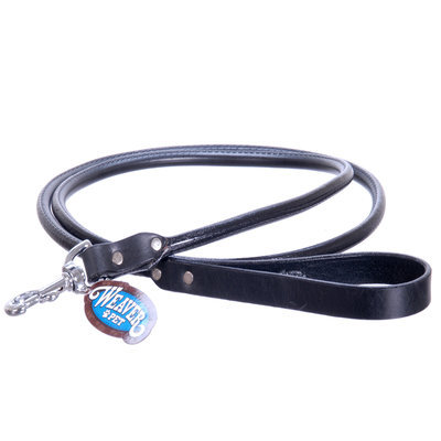 "5/8"" x 4', Black, Briarwood Leash"
