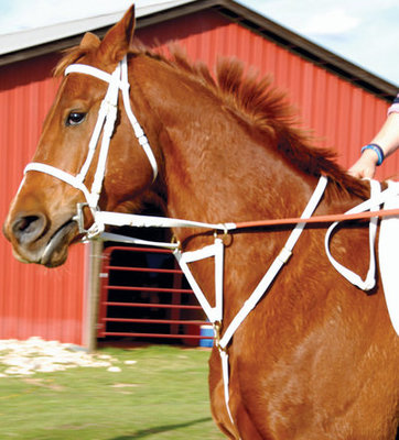 Beta TB Racing Reins, Brown