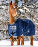 Bucas Freedom 600D Medium Weight Horse Blanket