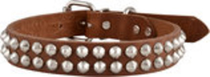 Bully Leather Dog Collars