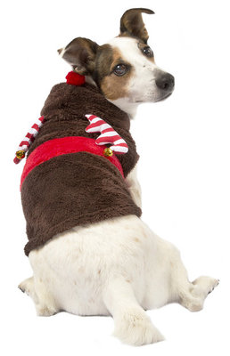 Candy Cane Dog Christmas Sweater w/Hood
