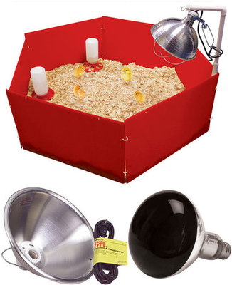 Chick Corral and Heat Lamp Kit