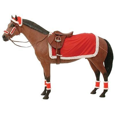 9 Piece Christmas Riding Set