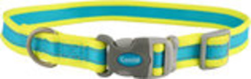 "Coastal Pet Attire Pro Adjustable Dog Collar, 8""-12"" x 3/4"""