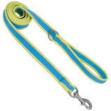 Coastal Pet Attire Pro Nylon Dog Leash, 6' x 1""