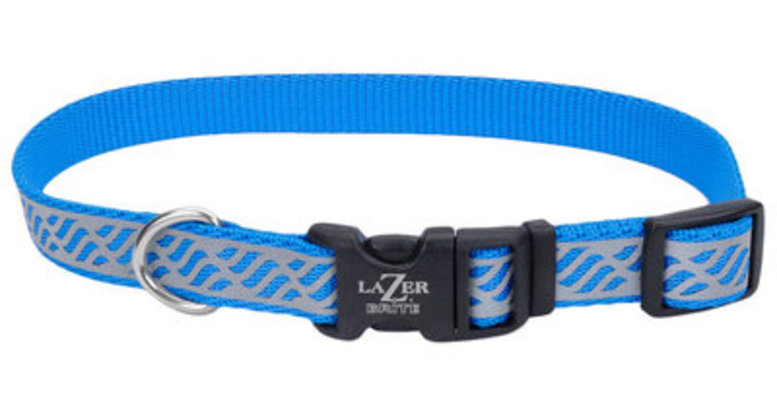 "Lazer Brite 1"" Dog Collar, 18""-26"""
