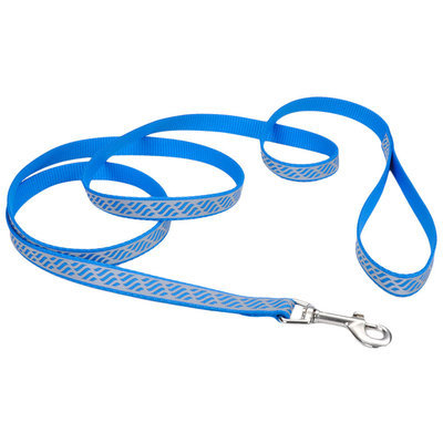 Coastal Pet Lazer Brite Dog Leash, 6' x 1""