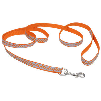 Coastal Pet Lazer Brite Dog Leash, 6' x 3/8""