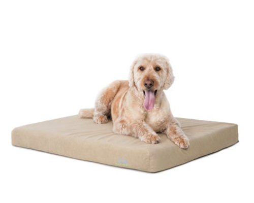 "Comfort Deluxe Orthopedic Dog Bed, 24"" x 33"" x 4"""