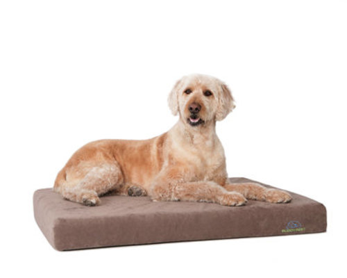"Comfort Deluxe Orthopedic Bed, 32"" x 48"" x 5"""