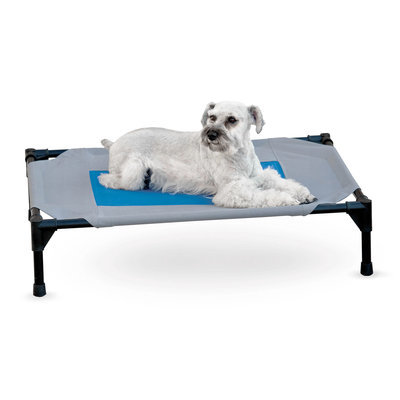 Coolin' Gel Pet Cot, Medium