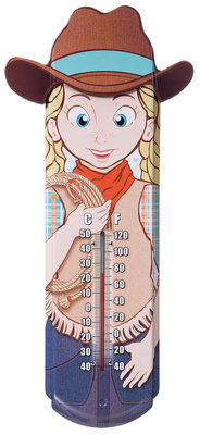 Decorative Tin Thermometer