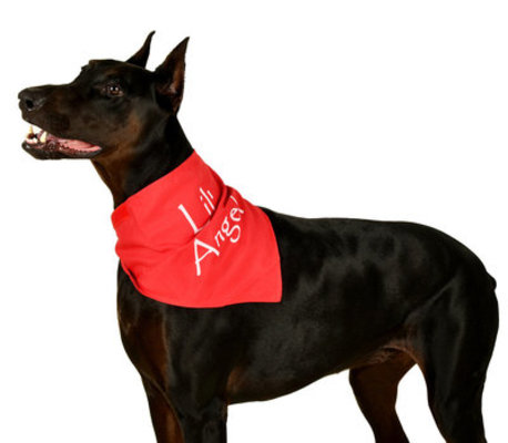 "Reversible Pet Bandana ""Define Naughty / Lil' Angel"", Red"