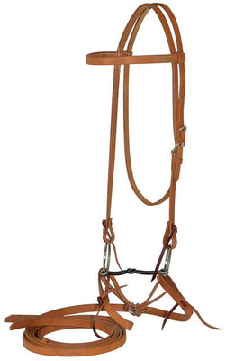Diamond R Bridle with O-Ring Bit