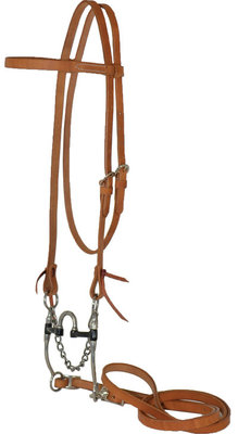 Diamond R Correction Horse Bridle
