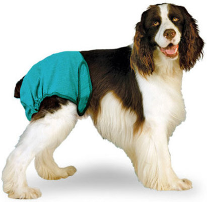X-Small Washable Dog Diaper