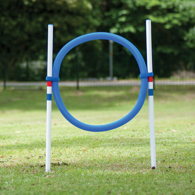 Dog Agility Ring Jump