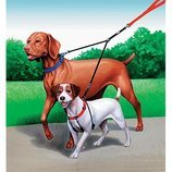 Double Dog™ Leash & Coupler
