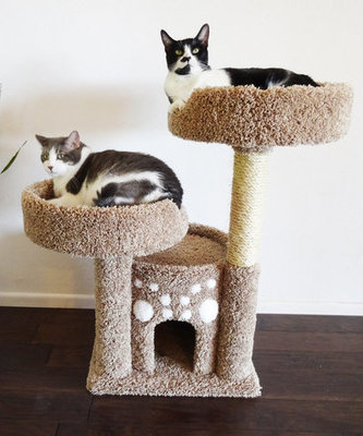 Premier Double Perch Cat Condo