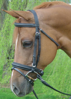 Draft Dressage Crank Bridle & Rubber Reins